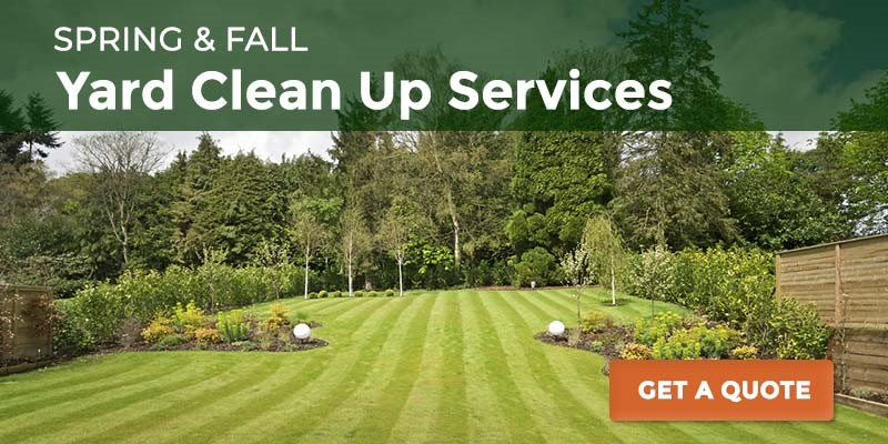 Yard clean up services_CTA